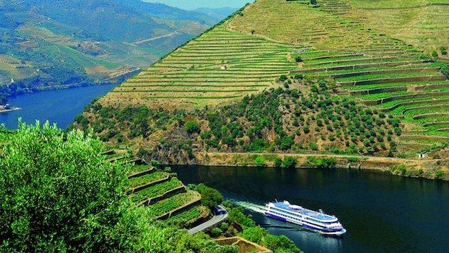 daytrip porto em vale Douro