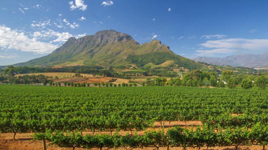 No west cape tem stellenbosch e frenshoek em Africa do Sul