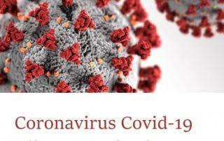 Coronavirus Covid19 / Updates Brasil
