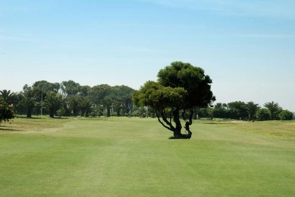 Oporto Golf Clube lado de Espinho